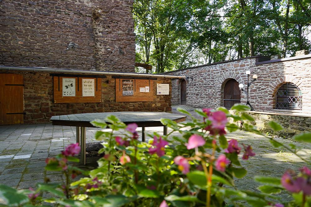 Mansfelder Grund-Helbra - Bornstedt - Burg Bornstedt