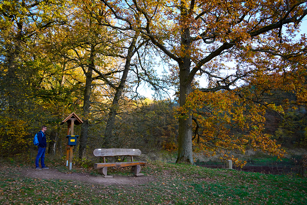 Harzer Wandernadel- Bauerngraben