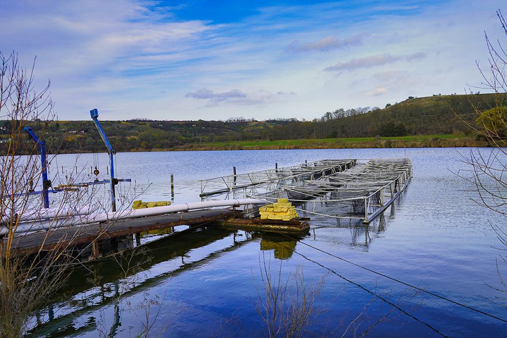 Seegebiet Mansfelder Land Fischerhof am Kerner See