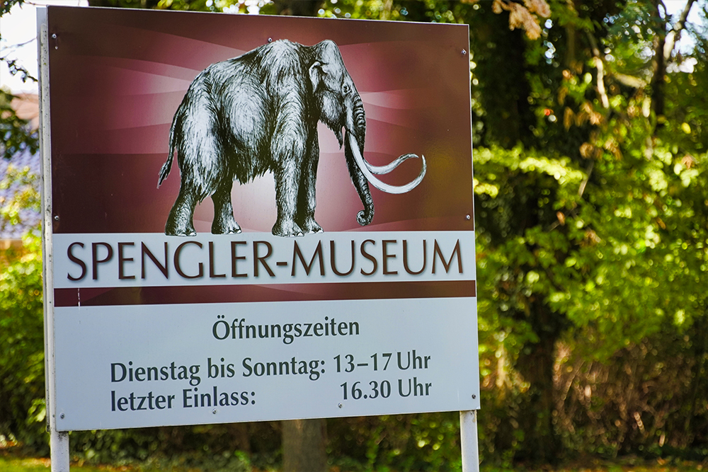 Sangerhausen Spengler Museum