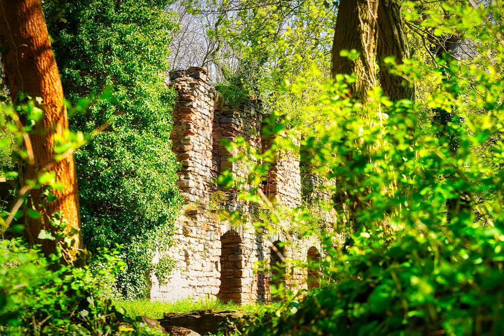 Mansfeld - Burgreste Schloss Mansfeld