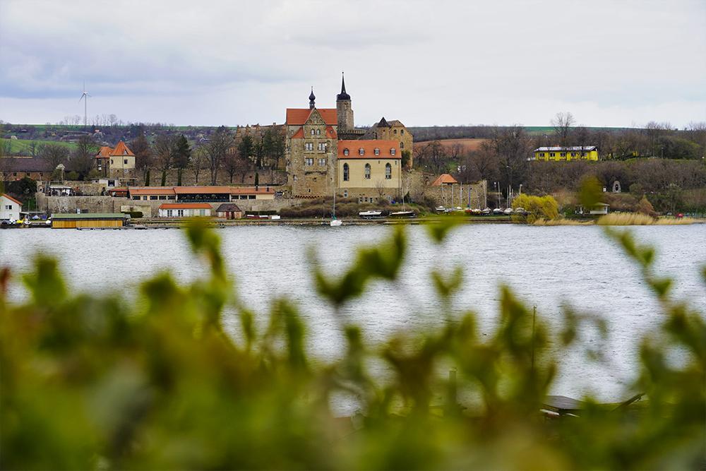 Seegebiet Mansfelder Land - Schloss Seeburg Im Frühling