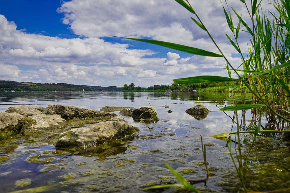 Seegebiet Mansfelder Land - Süßer See bei Aseleben