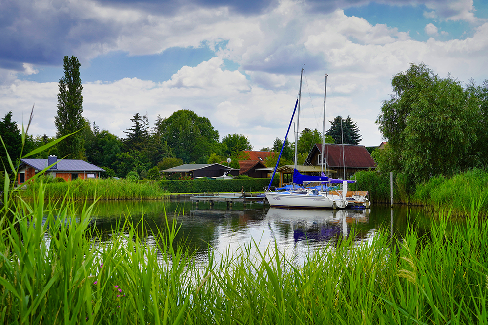Seegebiet Mansfelder Land Süßer See Bei Aseleben