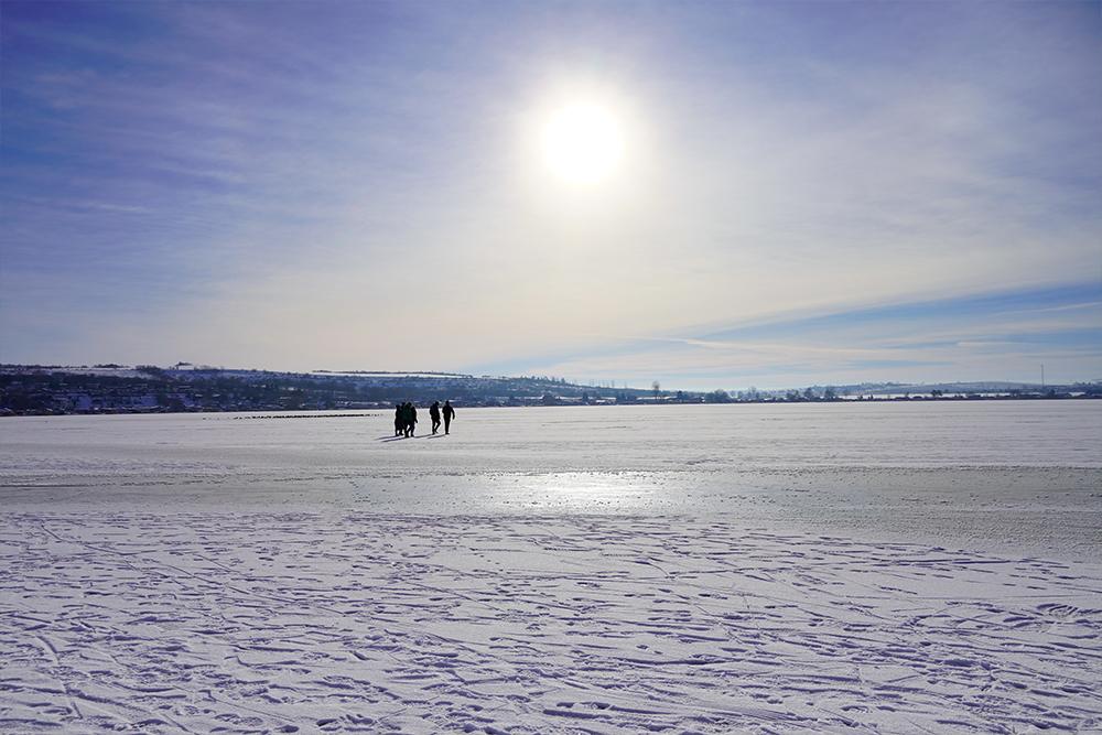 Seegebiet Mansfelder Land - Süßer See Im Winter