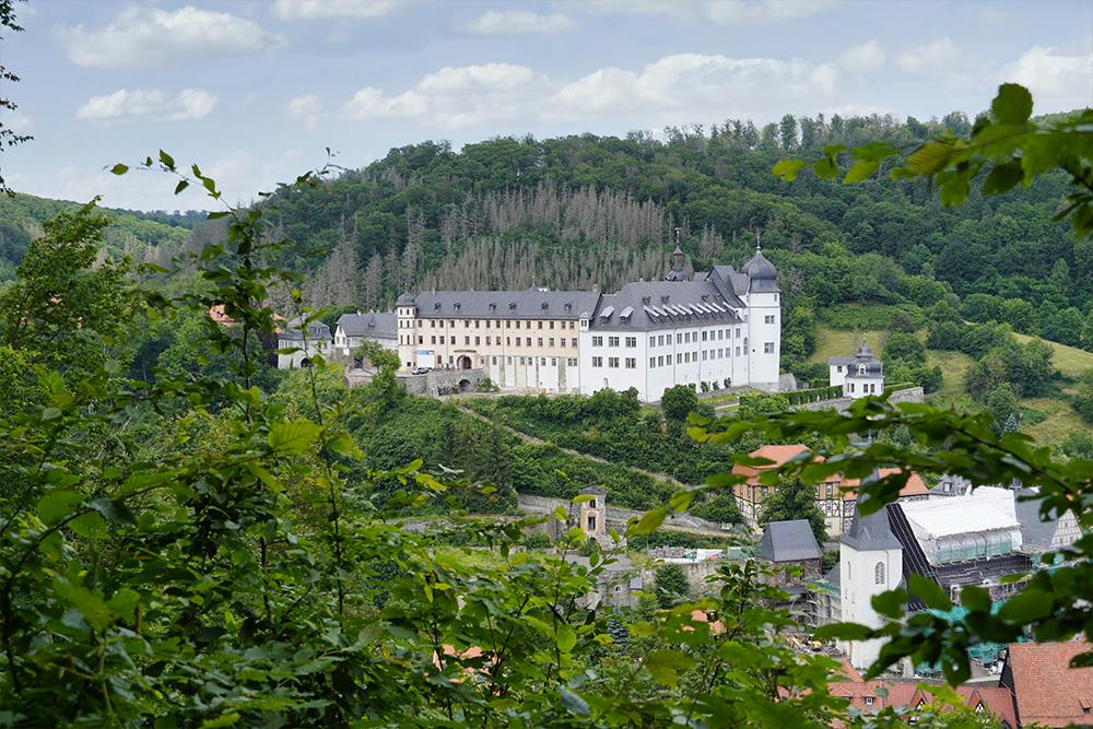 Stolberg (Harz) - Lutherweg und Lutherbuche