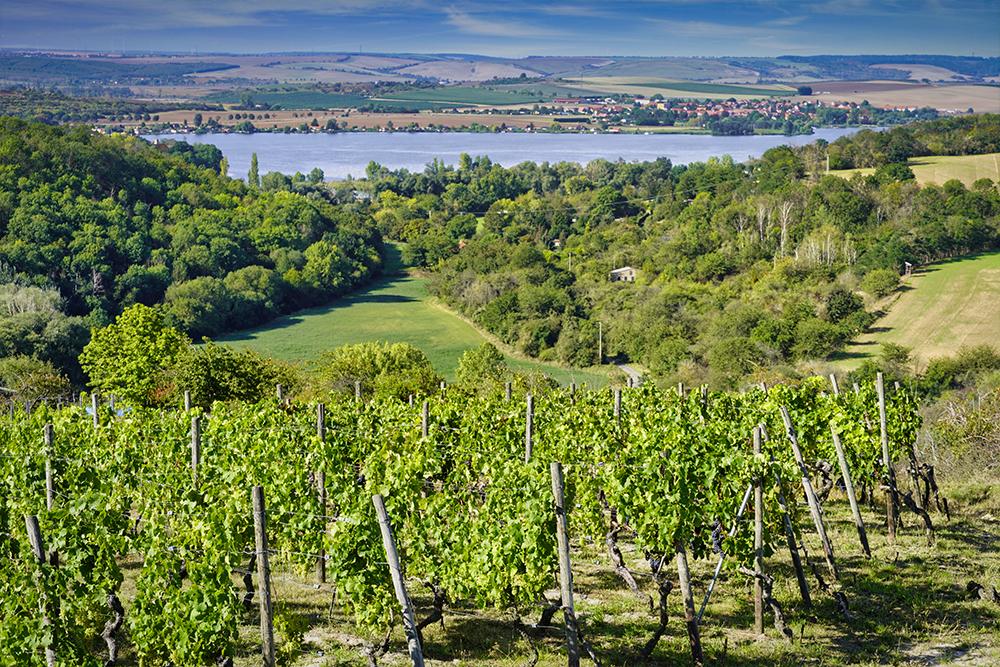 Weinstrasse Mansfelder Seen - Drei Seen Blick