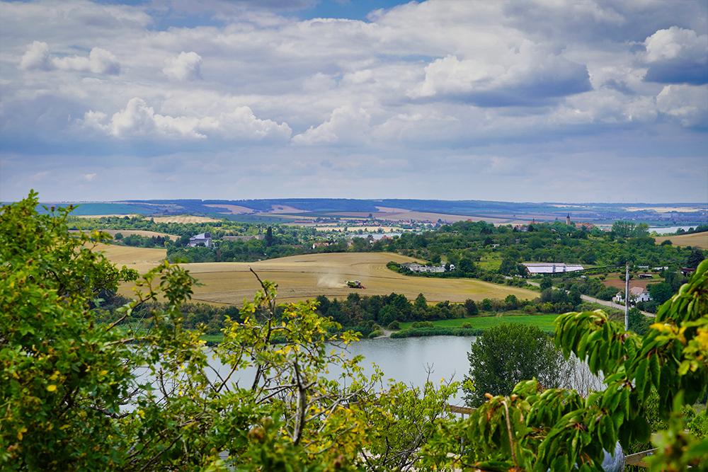 Weinstrasse Mansfelder Seen - Höhnstedt Kelterbergblick
